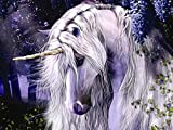 SODLAWN DIY 5D Diamond Painting by Number Kits, Crystal Rhinestone Embroidery Paint with Diamonds, Full Drill Canvas Art Picture for Home Wall Decor 12 x 16 inch (Unicorn Pegasus)