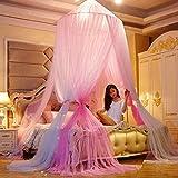 Yuany Porte moustiquaire, moustiquaire à baldaquin Double en Dentelle, baldaquin de lit pour Filles Princesse adapté à la Reine King Twin California King-j California King