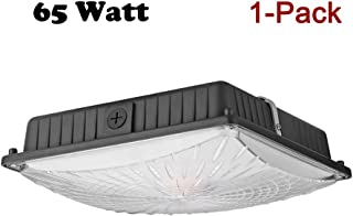 1000LED 65W LED Canopy Light Fixture, 8,000 Lumens, 300W-400W Replacement, 10