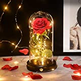 Shirylzee 美女と野獣 バラ LEDライト お花 ギフト ベッドサイドライト 部屋 装飾 ロマンチック 雰囲気 シルク造花 電池給電 誕生日プレゼント クリスマス 記念日 結婚お祝い バレンタイ ホワイトデー プレゼント インテリア オシャレ 癒し