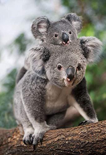 Jxxyoot Lernspielzeug Puzzles für Kinder 1000-teilig - Koala Mutter und Sohn - DIY Holzspiel Puzzle, 75x50cm