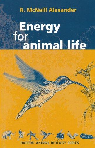 Energy For Animal Life (Oxford Animal Biology Series)