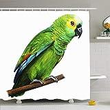 Ahawoso Duschvorhang Set mit Haken Exotischer grüner Papagei Detaillierte Zeichnung Talk Amazonian Amazona Animals Wildlife Hand Wald Savannen Wasserdichtes Polyestergewebe Bad Dekor für Badezimmer