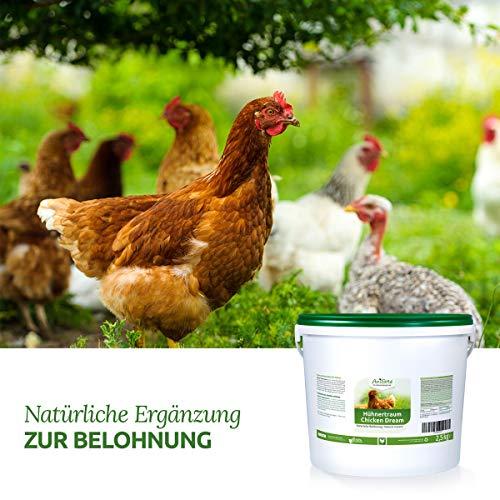 AniForte Hühnertraum Gesunde Belohnung 2,5 kg – Naturprodukt für Hühner - 4