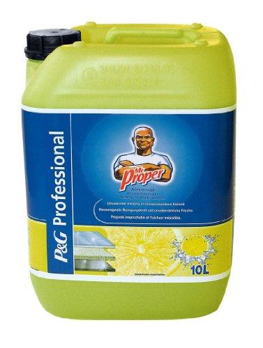 Meister Proper PROFESSIONAL Allzweckreiniger Zitrus, 10 Liter