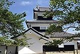 岡崎城、日本大人のためのDiyアートスタイルのパズル大人のための500ピースのジグソーパズル子供大きなパズルゲームおもちゃギフト