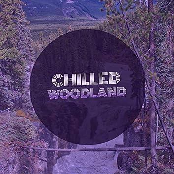 # 1 Album: Chilled Woodland