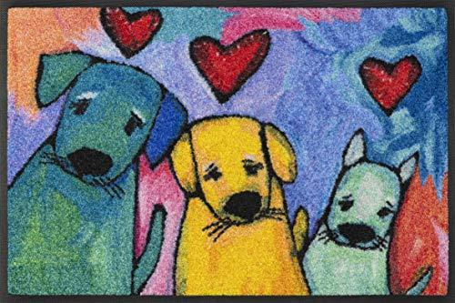 wash + dry Doggies - Felpudo (Poliamida, 40 x 60 cm), Multicolor