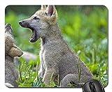 Alfombrilla de ratón bebé de lobo, (de diseño de perros crestados alfombrilla de ratón con...