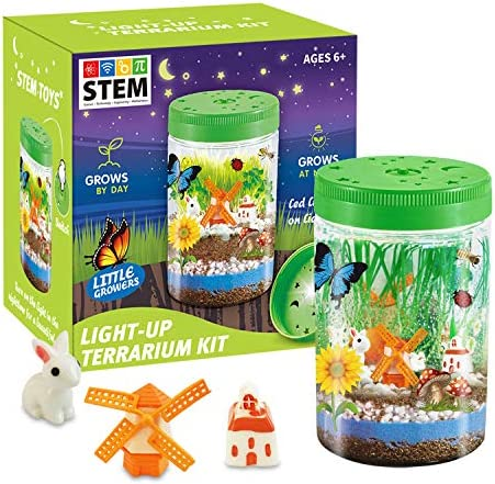 HOMOFY Light up Terrarium Kit for Kids with LED Light Create Mini Garden That Glows at Night product image