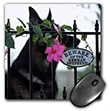 3dRose Mouse Pad Photograph of German Shepherd with Beware of The German Shepherd Sign. - 8 by 8-Inches (mp_301340_1)