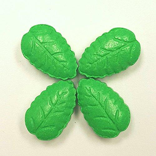 Plant V - New 10 Pills box Herb Pla…