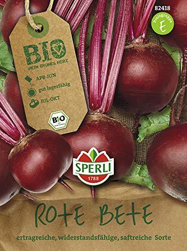 Rübensamen - Bio-Rote Beete Storuman - Bio-Saatgut von Sperli-Samen