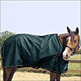 Weaver Heavyweight Turnout Blanket - Size:72' Color Hunter Green