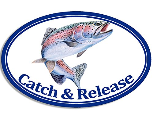American Vinyl Oval Rainbow Trout Catch and Release Sticker (Fish Fishing)