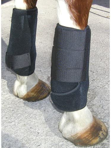 Popular popular Intrepid San Francisco Mall International All Around Sport Boots Horse