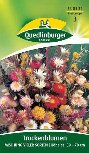 Fleurs sèches, mélange de nombreuses variétés