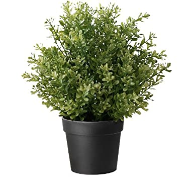 Ikea Artificial Potted Plant, Thyme, 9.5 Inch