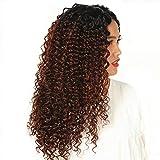 Pelucas lace front peluca pelo natural rizado realistas sinteticas peluca mujer castaña larga 20 inch negra a marrón