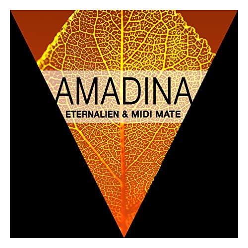 Eternalien & Midi Mate