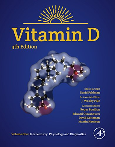 Vitamin D: Volume 1: Biochemistry, Physiology and Diagnostics (English Edition)