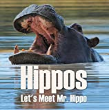 Hippos - Let's Meet Mr. Hippo: Hippo Books for Children (Animal Encyclopedia For Kids) (English Edition)