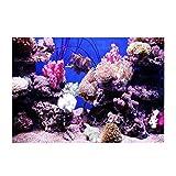 Fondo de acuario HD Ocean fondo marino coral Wallpaper 3D Effect Adhesivo Mundo subacuático fondo decoración para acuario (61 x 41 cm)