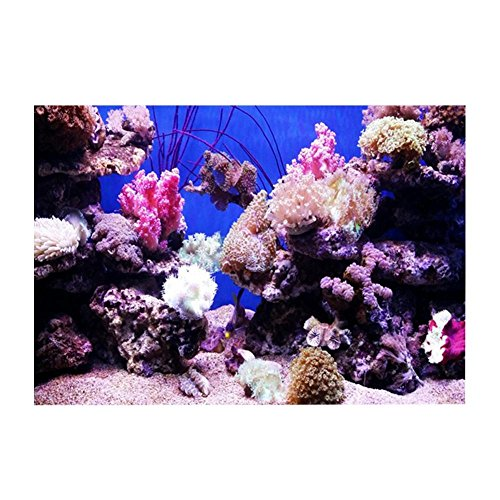 Biunixin April Geschenk Seaworld Poster, 3D-Effekt Klebstoff Aquarium Hintergrund für Aquarium Aquarium Dekoration(61 * 30cm)