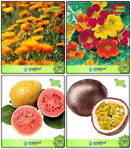 SOW PERFECT Semillas Semillas de Frutas Creativo Farmer Combo árbol: Guayaba, maracuyá - Violeta, Caléndula, la capuchina Joya de Semillas Africa Mix de Flores del jardín de Cocina Paquete