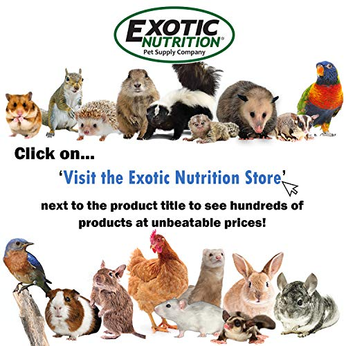 Exotic Nutrition Kage Kleen 16 oz. - 100% Natural, Eco-Friendly, Pet-Safe, Multi-Surface Cleaning Spray for Cages & Accessories