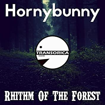 Rhithm Of The Forest