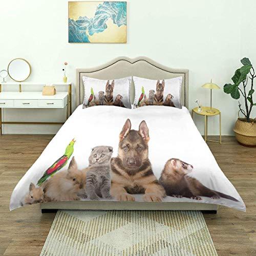 SmallNizi Funda nórdica, Dulce Foto con conejitos, Gato, Perro y hurón, Lindas Mascotas Encantadoras sobre Fondo Liso, Ropa de Cama de Lujo, cómoda y Ligera Microfibra