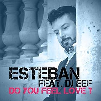 Do You Feel Love? (Mixes)