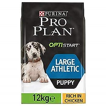 PRO PLAN Large Puppy Athletic avec OPTISTART Riche en Poulet - 12 KG - Croquettes pour chiots de grande taille