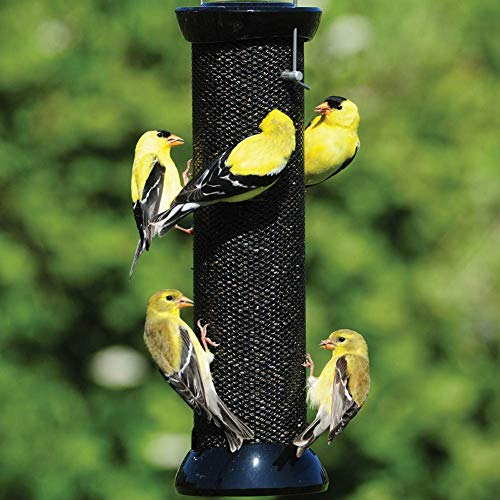 Droll Yankees Onyx Clever Clean and Fill Finch Magnet Bird Feeder, 12 Inches, Black