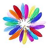 Frmarche - 60 plumas grandes de colores naturales multicolores para decoración de manualidades, artes y cazuelas, para atrapasueños, máscaras de decoración, bodas, fiestas de cumpleaños