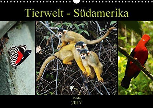 Tierwelt - Südamerika (Wandkalender 2017 DIN A3 quer): Verzaubernde Momentaufnahmen der Südamerikanischen Fauna (Monatskalender, 14 Seiten )