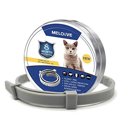 Le collier chat anti puces et tiques Meloive