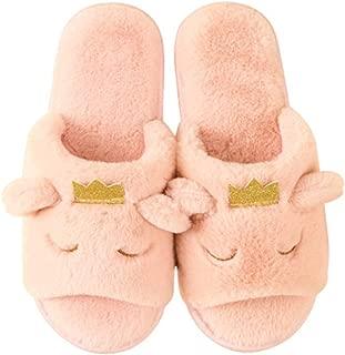 House Comfort Slippers Womens Bedroom Open Toe Slide Fur Slippers