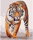 Pintura al óleo de bricolaje tigre pintura por números para lienzo niños adultos decoración set de regalo pintura acrílica 40x50 cm (sin marco)