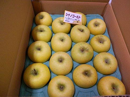 ド田舎直産 長野三兄弟リンゴ(シナノゴールド)14~16玉 5kg