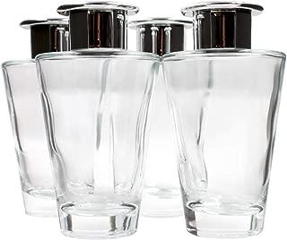Frandy House Glass Diffuser Bottles Silver Caps Refillable Diffuser Bottles Set of 4-5