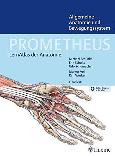 PROMETHEUS Allgemeine Anatomie und Bewegungssystem: LernAtlas der Anatomie