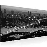 Wandbilder Istanbul Türkei 1 Teilig Modern Vlies Leinwand