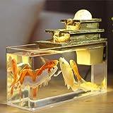 WYPDE Fuente de Agua Feng Shui Crafts meditación Ayuda del Acuario del Aire Interior Humedad Escritorio Adorno de la decoración del hogar