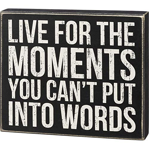 Primitives by Kathy 108896 Moments You Can't Put Into Words Box Sign, 9-inch High, Wood