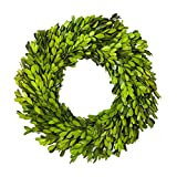 Boxwood Wreath 14 inch Preserved Nature Boxwood Wreath Home Decor Stay Fresh for Years Eas...