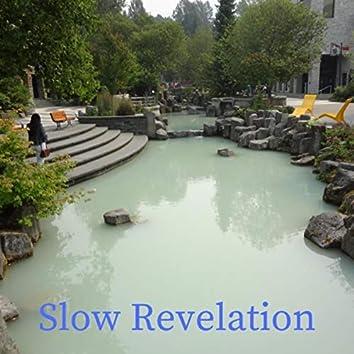 Slow Revelation
