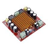 RUIZHI Scheda amplificatore digitale mono canale, 150W Nuova scheda amplificatore digitale monocanale Modulo amplificatore di potenza 12V-26V TPA3116D2