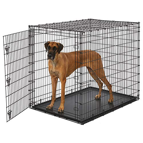Midwest SL54DD 'Ginormus' Single Door Dog Crate for XXL for the Largest Dogs Breeds, Great Dane, Mastiff, St. Bernard Basic Crates